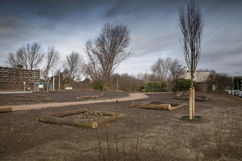 Het Piet Vink plantsoen is klaar. Nu is het wachten tot alles gaat groeien.