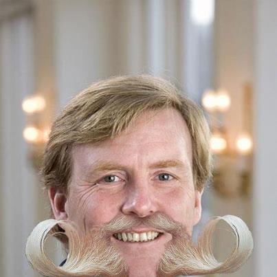 Geknevelde Willem Alexander