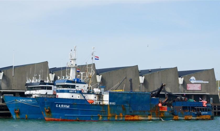 Russische schepen in Scheveningse haven. Foto door Roel Wijnants.