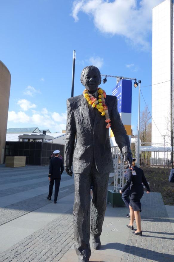 Mandela over NSS2014