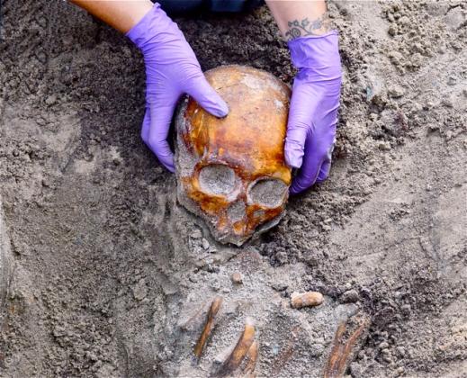 opgraving Den Haag